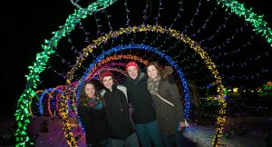 WPS Garden of Lights caterpillar
