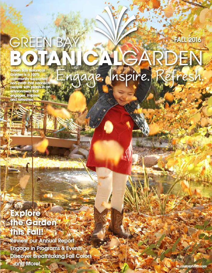Fall News Cover