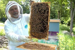 man holding up a bee hive