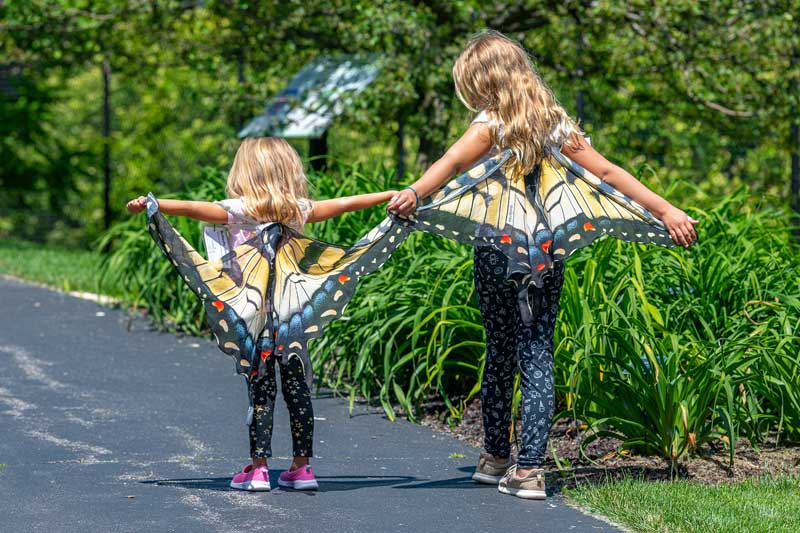 sisters with wings PC John Oates Photography
