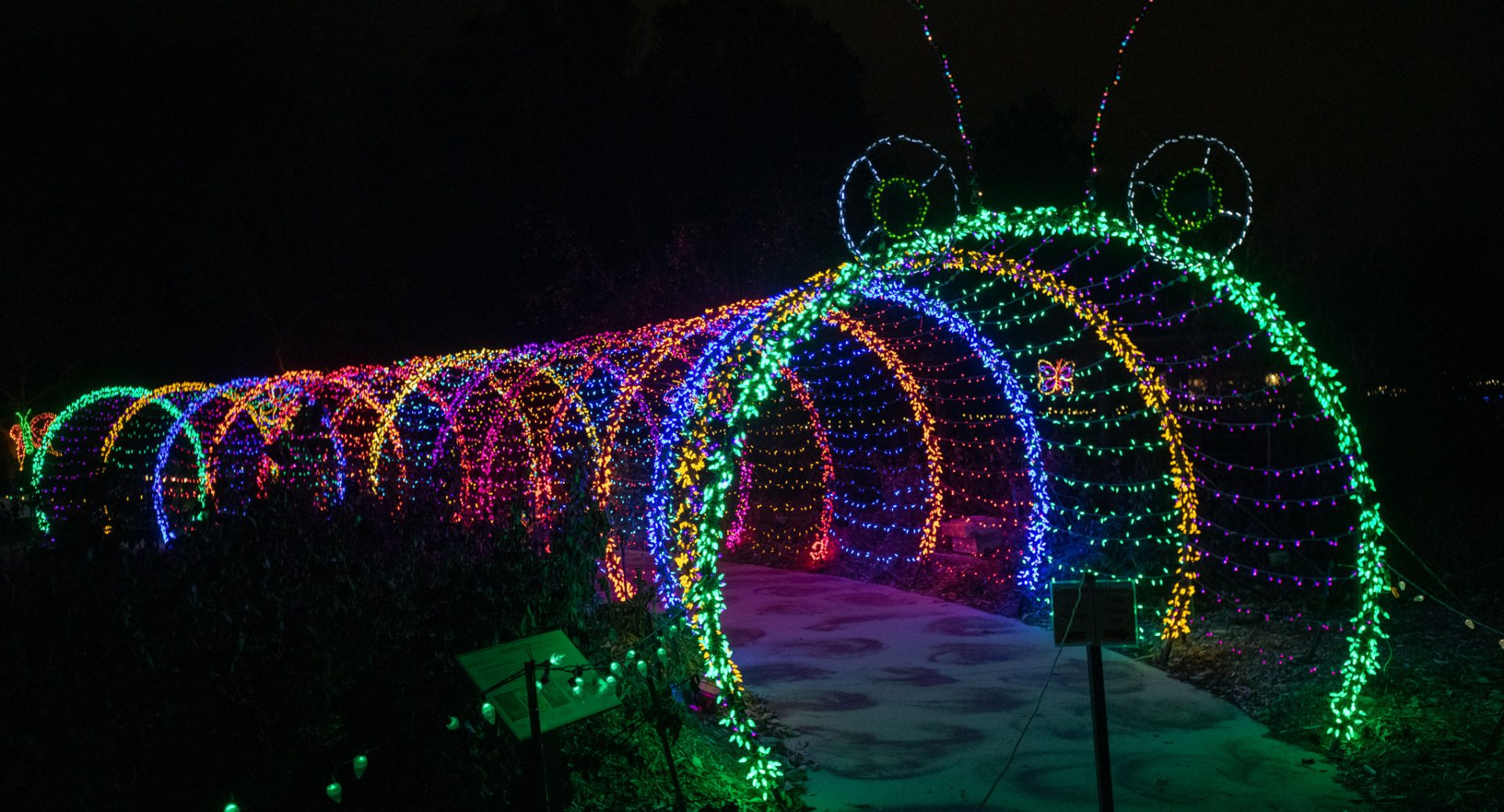 caterpillar holiday light display