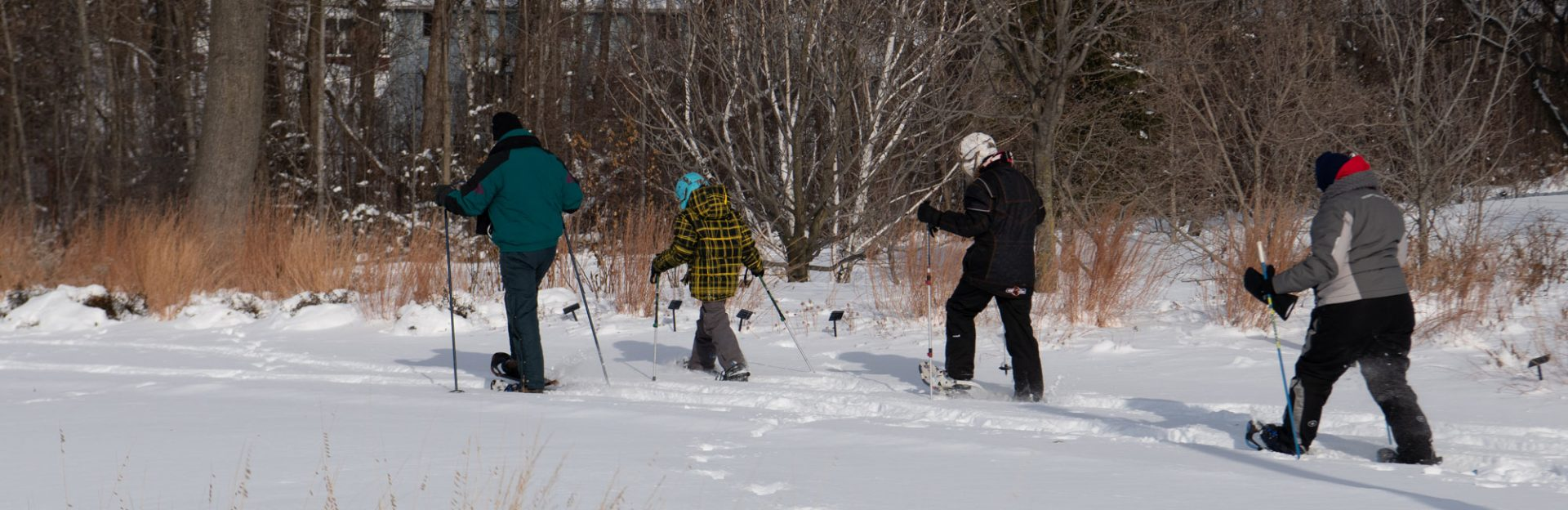 Final guided snowshoe hike on Saturday, February 29