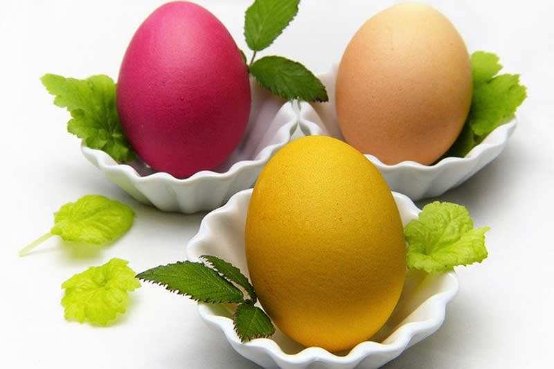 CANCELED: Natural Egg Dyes @ Green Bay Botanical Garden