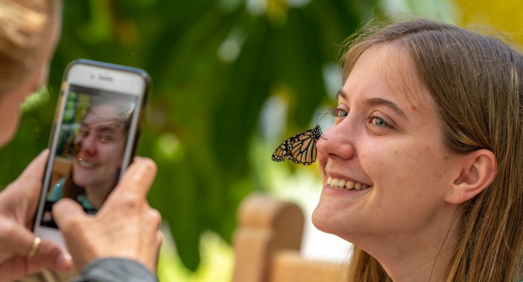 monarch butterfly on girl's nose